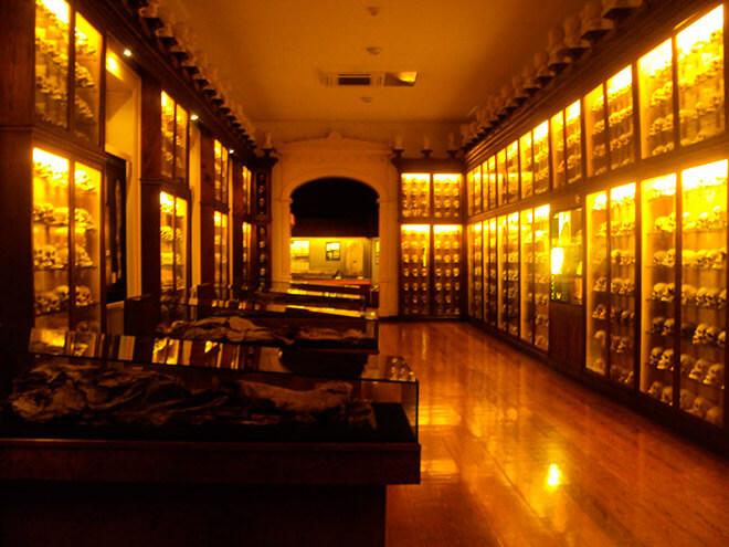 Музей Канарских островов